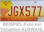 NEW MEXICO Land of Enchantment - Nummernschild # Schilder Auswahl