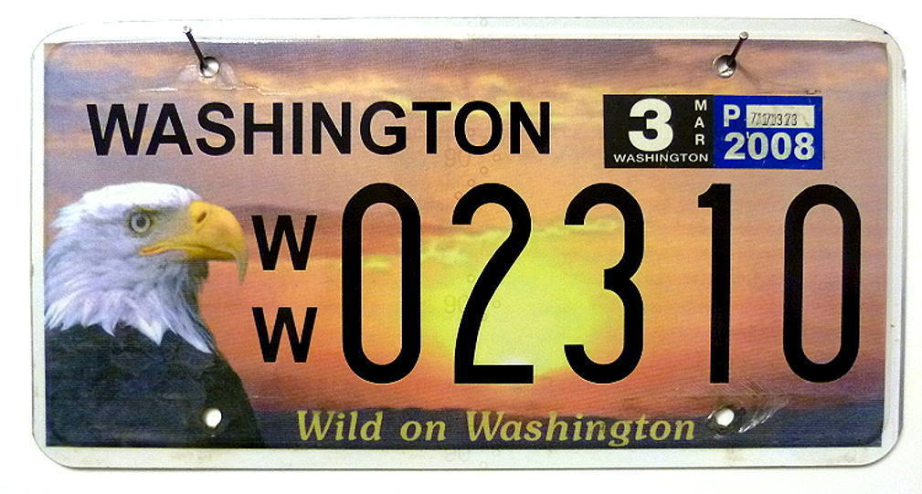 WASHINGTON Motiv Adler / Eagle - Nummernschild # 02310