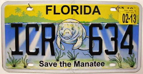 FLORIDA Save the Manatee - Nummernschild # ICR634 =